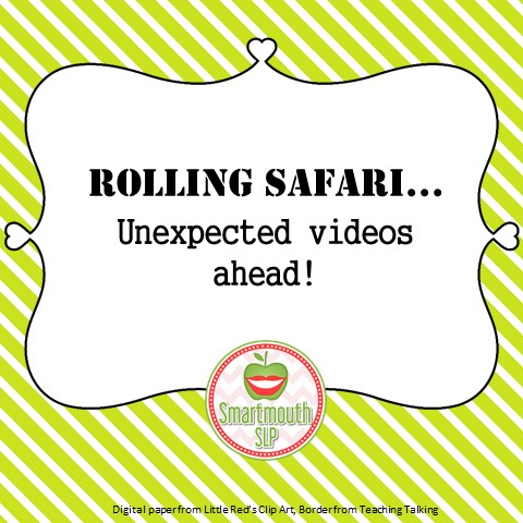 rolling safari blog